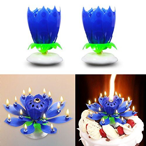 Easy GiftR The Amazing Happy Birthday Candle Romantic Musical Flower Party Light Intelligent Decorative Cake Candles With 14