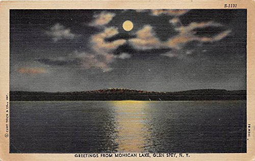 gree-mohican-lake-glen-spey-new-york-postcard