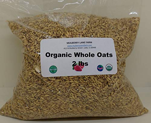 Grain Farm Whole - Whole Oats 2 Pounds, Hulled, Groats, USDA Certified Organic Non-GMO Bulk