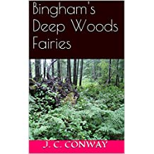 Bingham's Deep Woods Fairies
