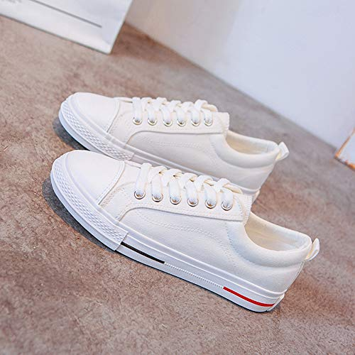 Low Sneakers Moda Donna Confortevole Up top Camminare Per Casual Lace Da Tela White qwIHn