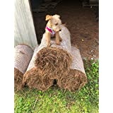Pine Straw Mulch - Premium, All-Natural, Loose in Box - 50-60 sqft