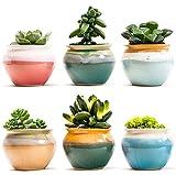 SUN-E 2.75 Inch Ceramic Succulent Plant Pot Flowing Glaze Black&White Base Serial Set Cactus Plant Pot Flower Pot Container Planter With Hole(6 In Set)