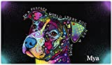 Cheap Drymate Personalized Pet Placemat, Dean Russo Designs, Custom Dog Food Mat, Cat Food Mat, Zorb-Tech Anti Flow Technology for Surface Protection (USA Made) (Large – 16″ x 28″, in a Perfect World)