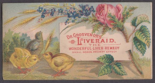 Dr Grosvenor's Liveraid Liver Remedy trade card 1880s chicks & flowers