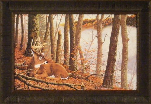 Secluded Hideaway by Robert J Schmidt 18x26 Buck Whitetail Deer Framed Art Print Wall Décor Picture