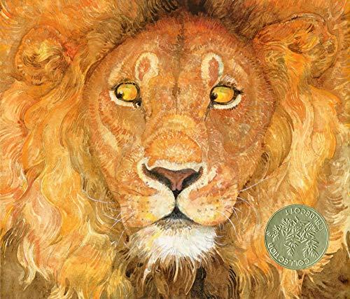 Le Lion Et La Souris Jerry Pinkney Ɯ¬ ɀšè²© Amazon