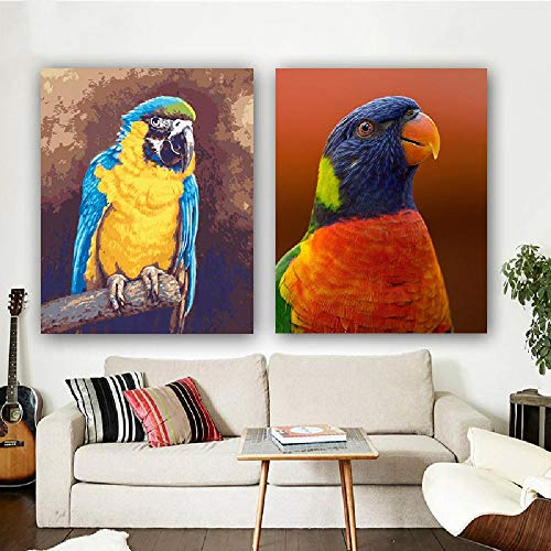 Paint by Numbers Kits DIY Digital Oil Painting Gift for Adults Kids Talking Parrot 16×20