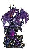 StealStreet 7871351 Le Elegant Purple Dragon