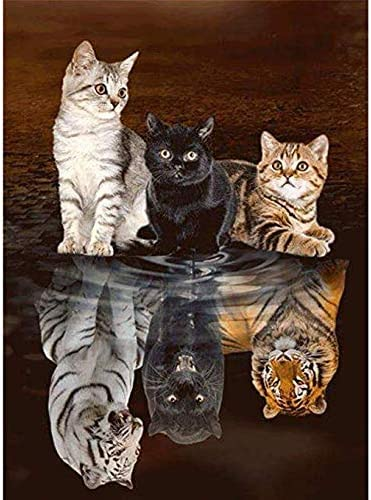 5D Diamond Painting Mail Box Cats Kit
