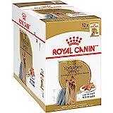 Royal Canin Breed Health Nutrition Yorkshire