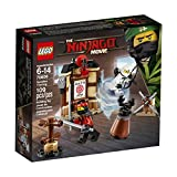 Toys : LEGO Ninjago Movie Spinjitzu Training 70606 Building Kit (109 Piece)