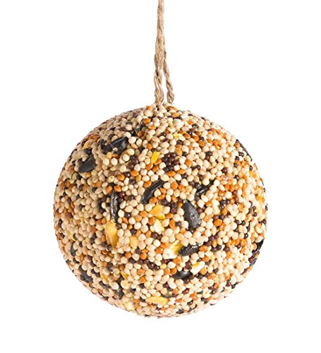 Wind & Weather Bird Seed Ball