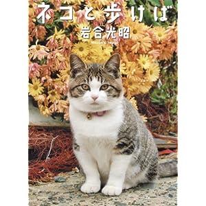 『ネコと歩けば』