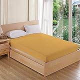 AVI Waterproof Dustproof Terry Cotton Mattress Protector Double Bed - Beige (72 X 72 inches)