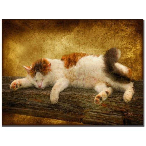 Sleeping Kitty by Lois Bryan, 22x32-Inch Canvas Wall Art