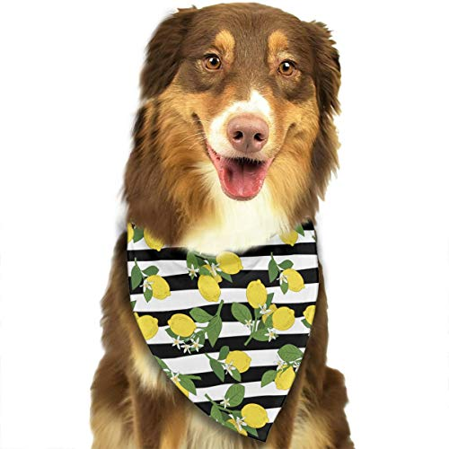 - HGFR Lemon On Black and White Stripes Customized Dog Headscarf Bright Coloured Scarfs Cute Triangle Bibs Accessories for Pet Dogs