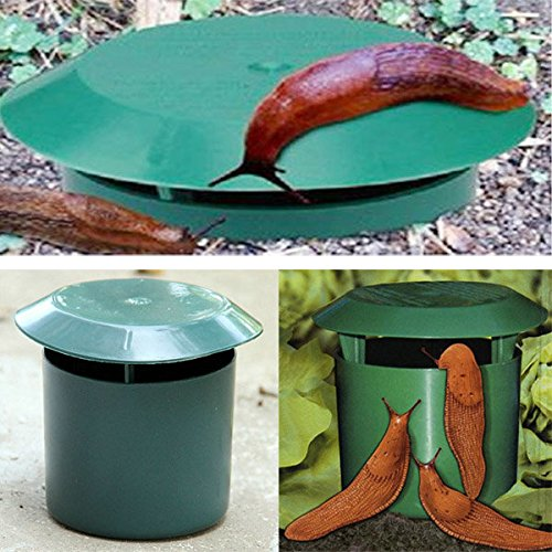 Pink Lizard Vegetable Garden Safe Snail Trap Physics Environmental Limax Snail Slug Trapper