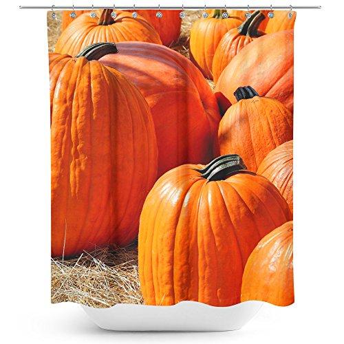 Westlake Art - Pumpkin Squash - Fabric Printed