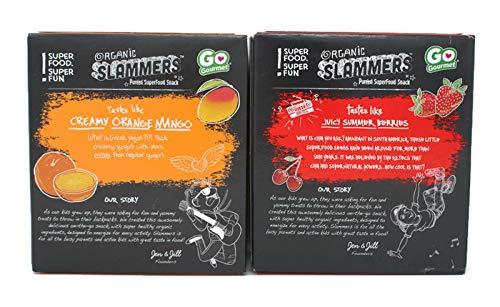 Variety Pack - Go Gourmet Organic Slammers Pureed SuperFood Snack (12.68oz) - Amped (Blend- Apple,Strawberry,Cherry,Chia), Epic (Blend- Apples,Mangoes,Bananas,Carrots,Orange,Greek Yogurt & Vanilla)