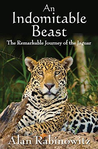 an-indomitable-beast-the-remarkable-journey-of-the-jaguar