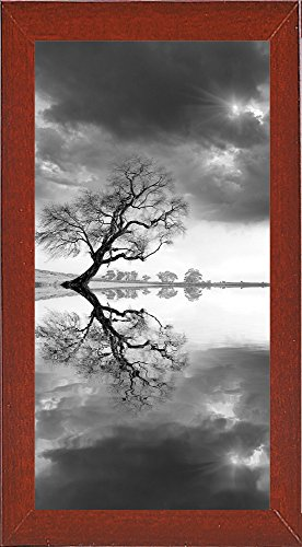 New Beginning Reflect Framed Print 45.0''x22.5'' by Moises Levy by Frame USA