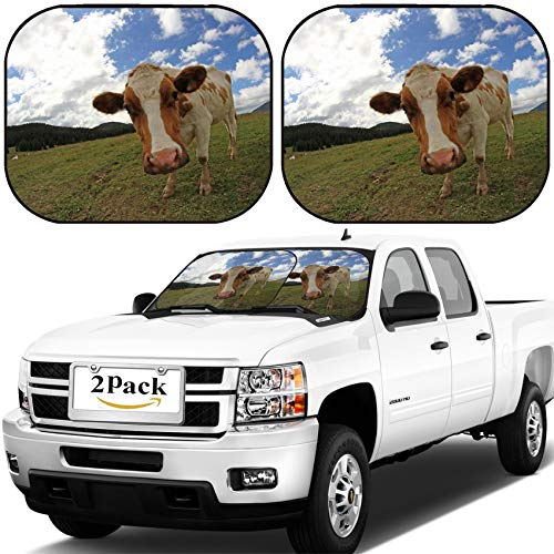 MSD Car Windshield Sun Shade, Universal Fit, 2-Piece for Car Window SunShades, Automotive Foldable Protector Cover, Image ID: 34227801 Mountain Cow Photographed with fisheye Lens and Blue Sky with wh