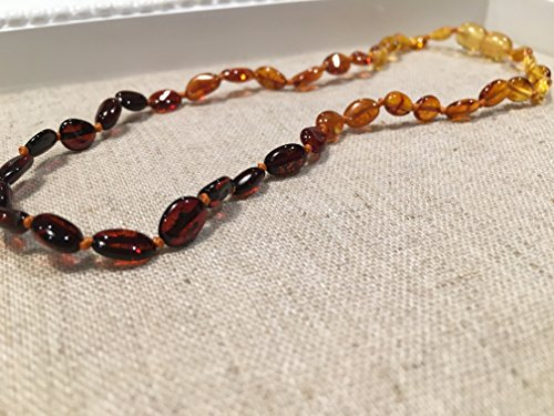 11'' Polished Rainbow Baltic Amber Necklace Bean for Baby, Infant, newborn through 11 months screw clasp dark front by Baltic Essentials