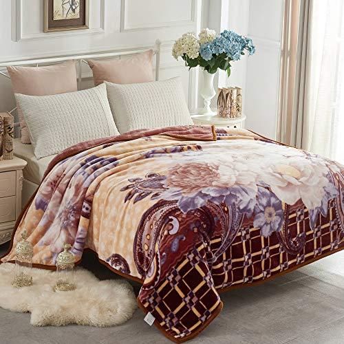 JYK Heavy Korean Mink Fleece Blanket - 2 Ply Reversible 520GSM Silky Soft Plush Warm Blanket for Autumn Winter (Queen, ()