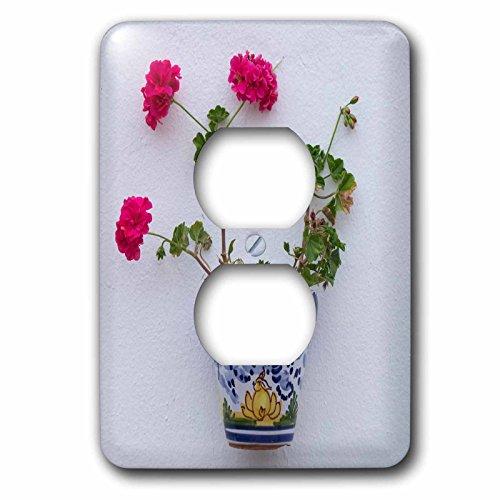 3dRose Danita Delimont - Flowers - Spain, Andalusia. Arcos de la Frontera. Painted ceramic flower pot. - Light Switch Covers - 2 plug outlet cover (lsp_277888_6) by 3dRose