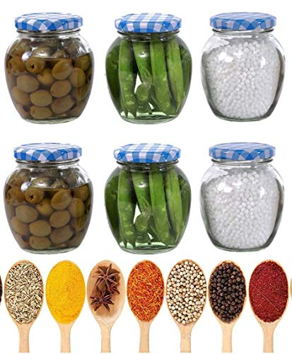 STAR WORK Matka Glass Jar for Storage of Spices and Dry Fruit, Air Tight Blue Checks Metal Lid Set of 6 (Blue Checks – 400 ml) Price & Reviews