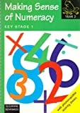 Making Sense of Numeracy: Year 2