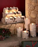 Woodland Tea Light Candle-Holders Candle-Holder & Logs with FREE Gift