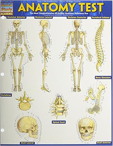 Anatomy Test Updated (Upd)