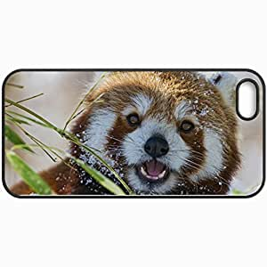 Personalized Protective Hardshell Back Hardcover For iPhone 5/5S, Red Panda Design In Black Case Color