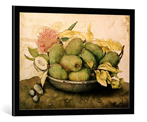 kunst für alle Framed Art Print: Giovanna Garzoni Bowl with Plums and a Carnation - Decorative Fine Art Poster, Picture with Frame, 29.5x21.7 inch / 75x55 cm, Black/Edge Grey ()