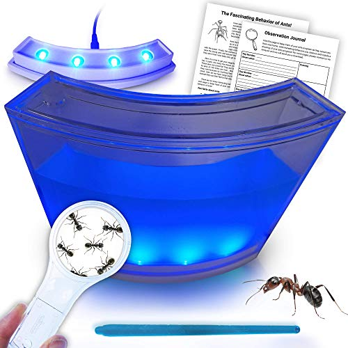 ANTARTISTS Gel Ant Farm w/ LED Light Ant Coupon. All About Ants and Observation Journal Included. Educational Observatory for Kids & Adults. Learning Science Kit. -
