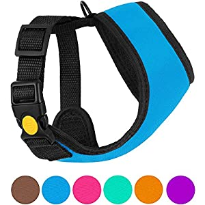 CollarDirect Soft Mesh Dog Harness Neoprene Puppy Padded Vest Adjustable Outdoor Pet Harnesses for Small and Medium Dogs Pink Blue Purple Orange (XS, Blue)