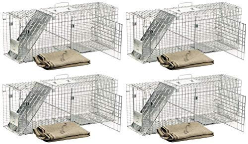 - Havahart 1099 Feral Stray Cat Rescue Kit (Pack of 4)
