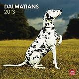(12x12) Dalmatians - 2013 Wall Calendar