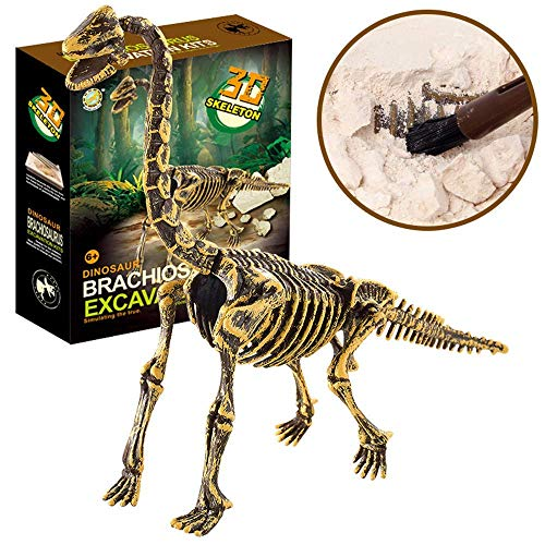 HitHopKing Science Educational Dinosaur Fossil Dig Kit Toys for Kids, Kids Dinosaur Fossil Digging Excavation Tools ()