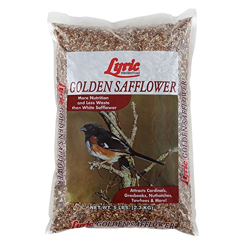 (Lyric 2647444 Golden Safflower Seed - 5 lb.)