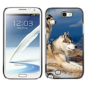 YiPhone /// Prima de resorte delgada de la cubierta del caso de Shell Armor - Swedish Vallhund Elkhound Wolf Dog - Samsung Galaxy Note 2 N7100