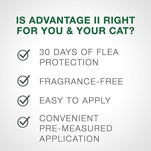 Flea Prevention for Cats, 5-9 lb, 4 doses, Advantage II