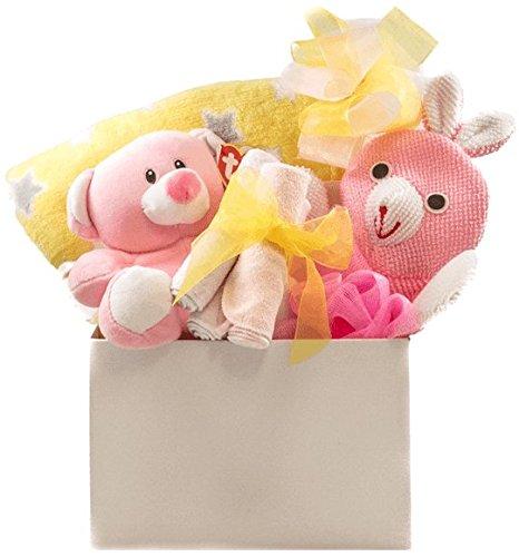 Baby Girl Snuggles Gift Basket with Blanket, Bath Accessory, Washcloths and Teddy Pellatt Cornucopia