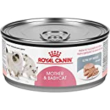 Royal Canin Mother & Babycat Ultra-Soft Mousse in Sauce Wet Cat Food for New Kittens and Nursing or Pregnant Mother Cats, 5.8 Ounce (Pack of 24)