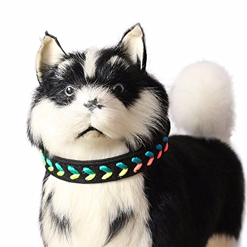Hpapadks Colorful Rope Braided Dog Collar,Exquisite Adjustable 7 Colour Woven Dog Puppy Pet Collars Dog with Dog (Gentle Leader Treats)