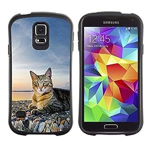 "Pulsar iFace Series Tpu silicona Carcasa Funda Case para Samsung Galaxy S5 , Casa del gato Naturaleza Sunset Shorthair británico"""