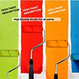 10 Piece for All Paints High Density Acrylic 4