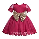 iEFiEL Baby Girls Floral Lace Embroidered Short Sleeves Princess Dress Pageant Wedding Christening Gown with Glitter Sequins Bowknot Burgundy 18-24 Months